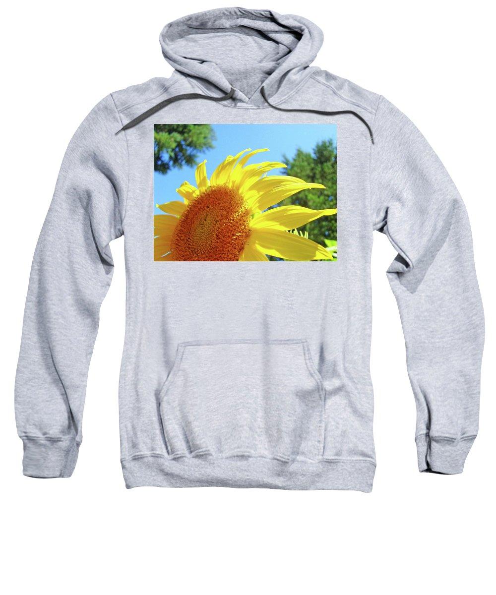 Sunflower Sweatshirt featuring the photograph Sunflower Sunlit Art Print Canvas Sun Flowers Baslee Troutman by Baslee Troutman