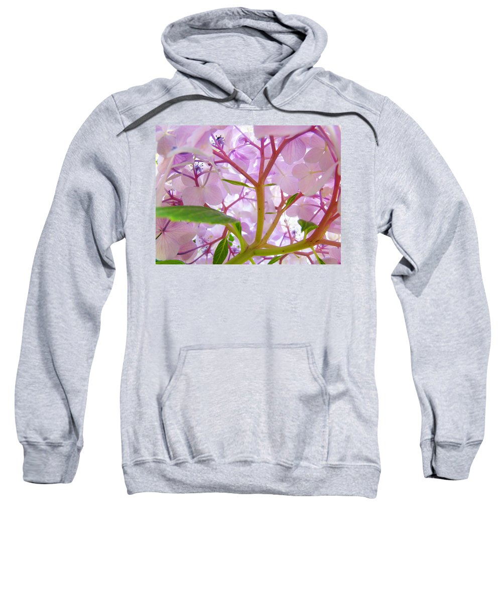 Hydrangea Sweatshirt featuring the photograph Sunlit Hydrangea Flowers Garden Art Prints Baslee Troutman by Baslee Troutman