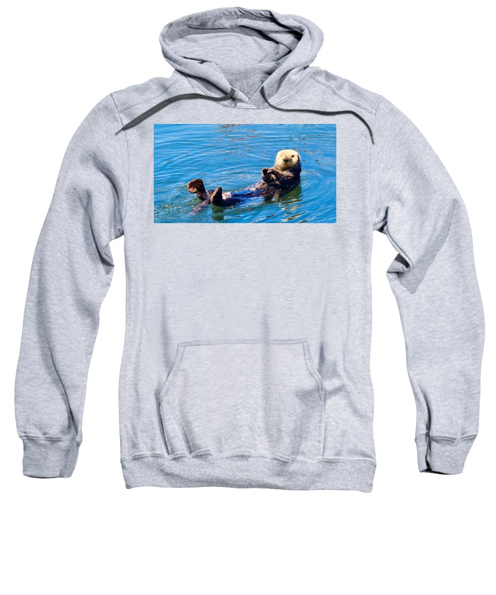 Otter Sweatshirt featuring the photograph Sunning Otter by Erin Finnegan