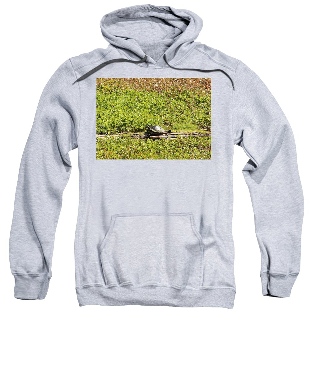 Turtle Sweatshirt featuring the photograph Sunning Turtle In Swamp by Carol Groenen