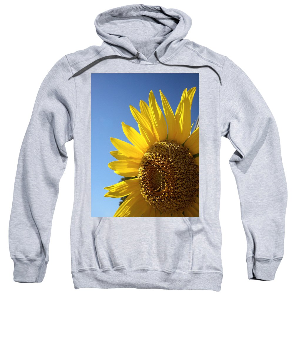 Sunflower Sweatshirt featuring the photograph Sunny Skies by Donna Blackhall