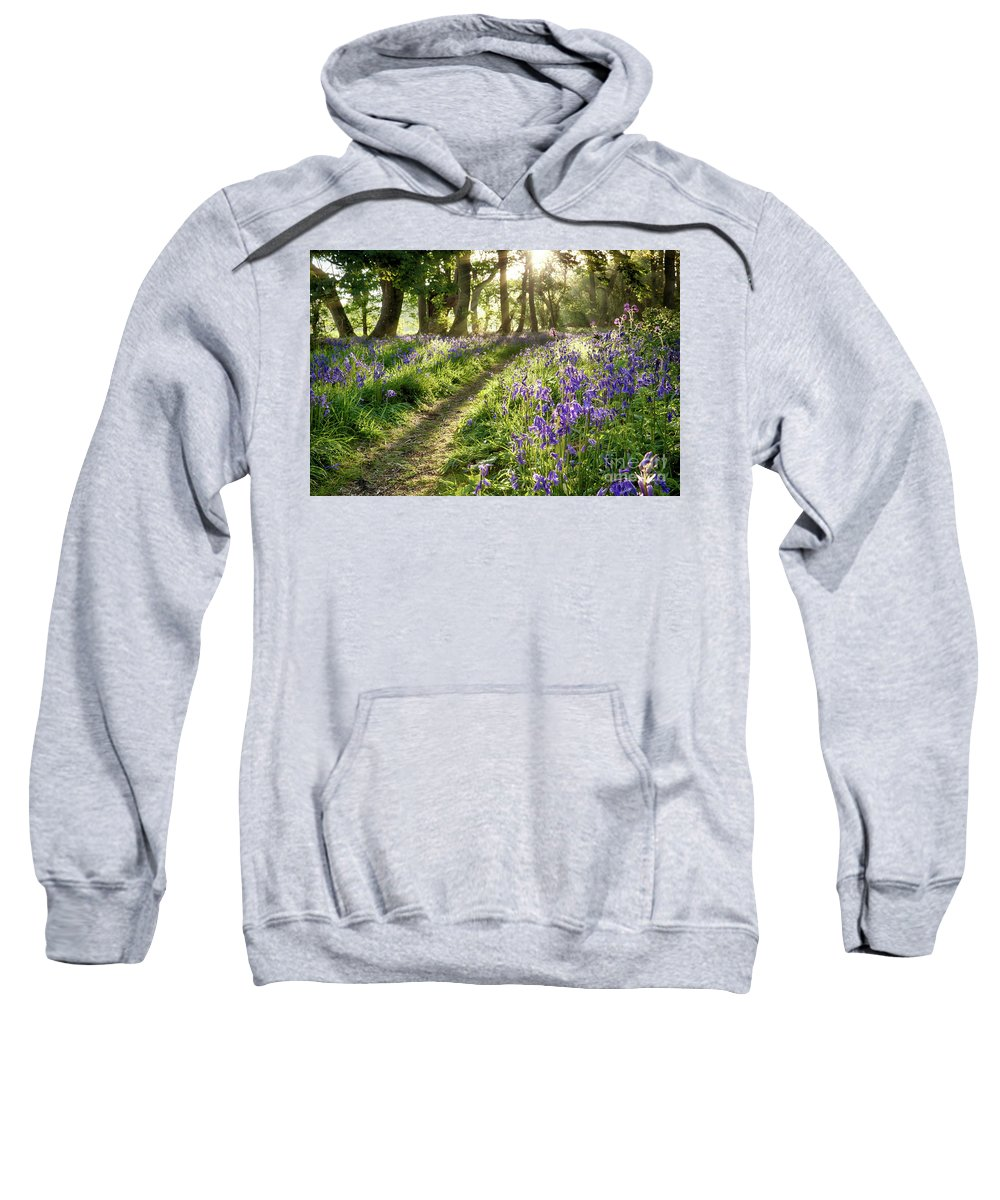 Flower Sweatshirt featuring the photograph Sunrise Through Bluebell Woodland by Simon Bratt Photography LRPS