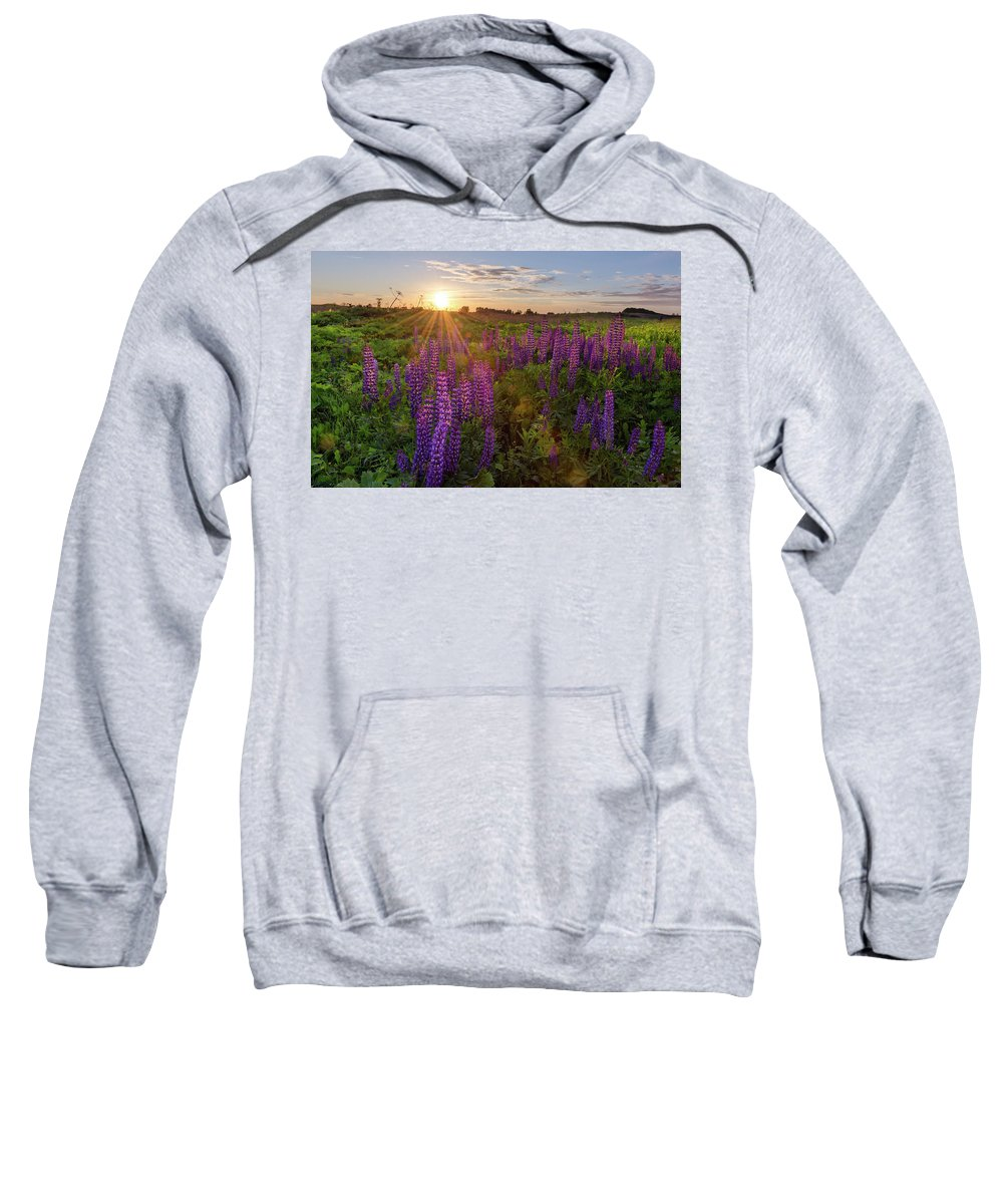 Field Sweatshirt featuring the photograph Sunset Over Meadow Of Lupine by Maya Afzaal