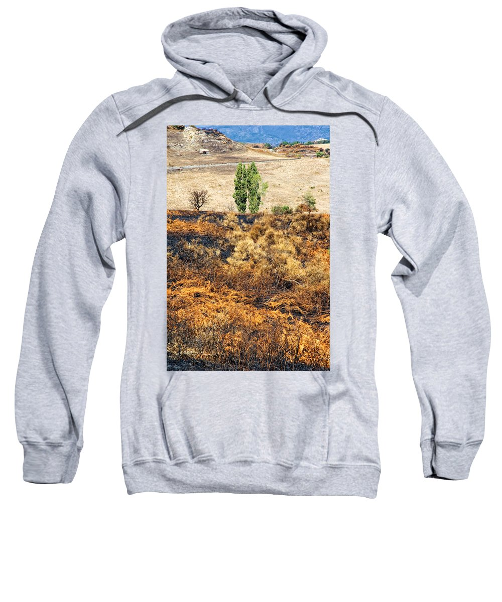 Hills Sweatshirt featuring the photograph Survivors - After The Fire by Silvia Ganora