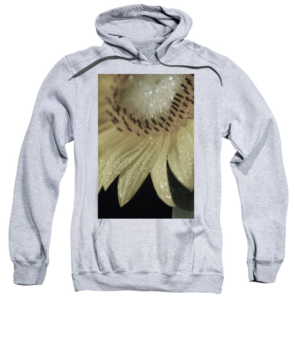 Sun Sweatshirt featuring the photograph Swagger by Carolyn Stagger Cokley