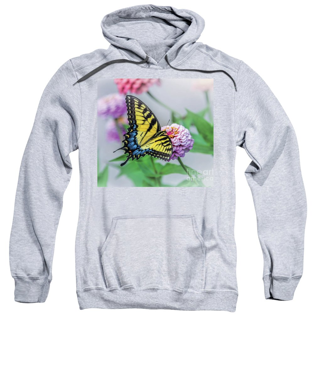 Swallowtail Sweatshirt featuring the photograph Swallowtail Butterfly by Esther Lane