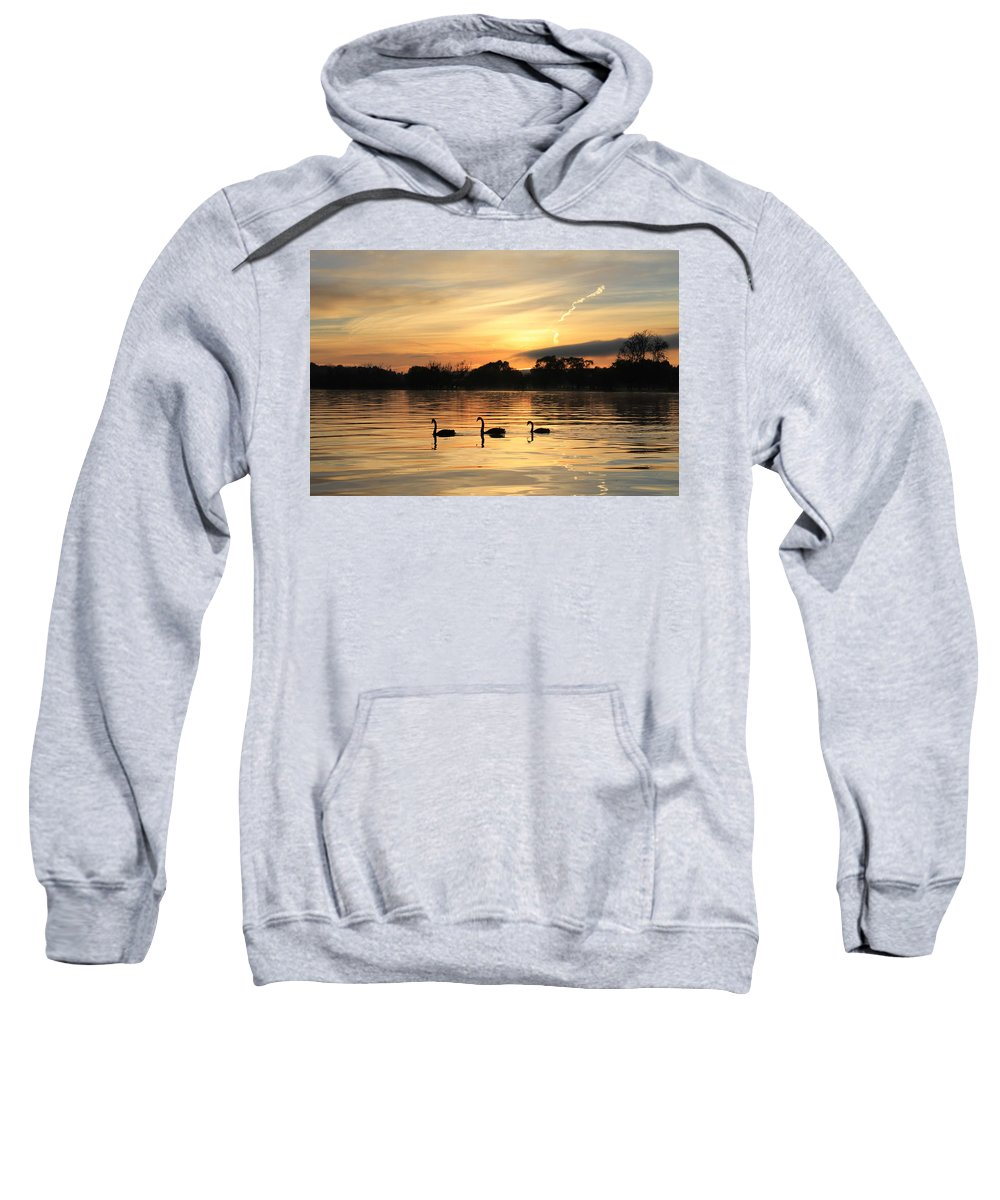 Sunrise Sweatshirt featuring the photograph Swans At Dawn by Anthony Croke