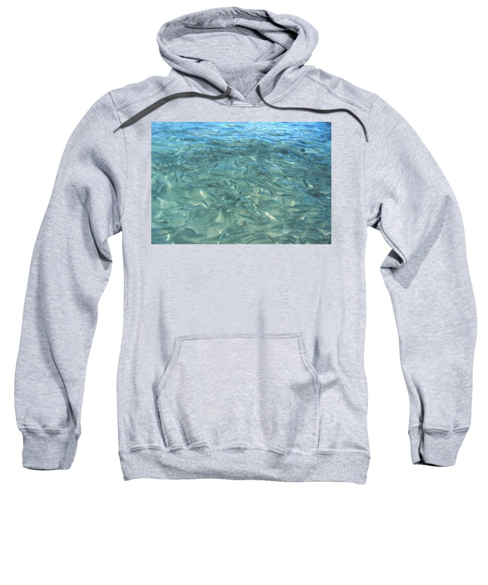 1986 Sweatshirt featuring the photograph Swarming Fish by Will Borden