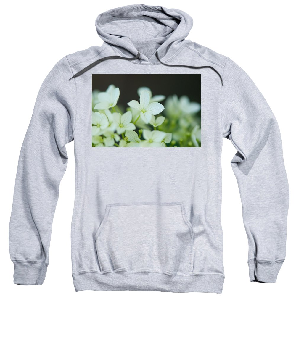 Sweet Sweatshirt featuring the photograph Sweet Hydrangea by Lisa Knechtel