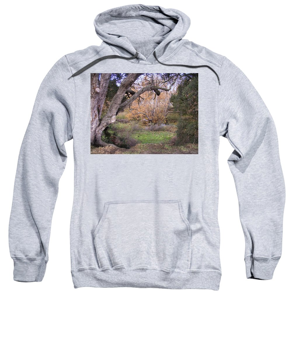 Landscape Sweatshirt featuring the photograph Sycamore Grove Fall by Karen W Meyer