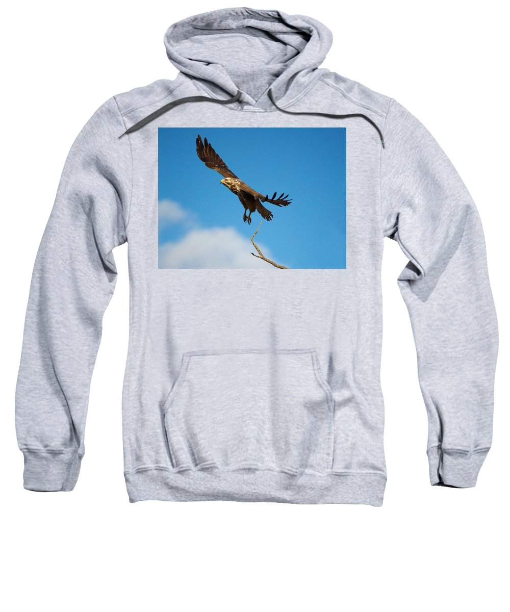 Nature Sweatshirt featuring the photograph Take Off by Crystal Massop
