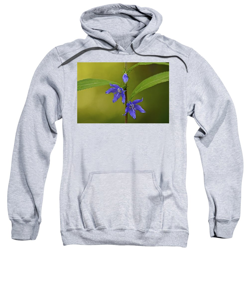 Abstract Sweatshirt featuring the photograph Tall Bellflower by Jack R Perry