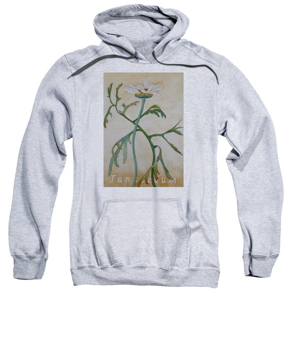 Flower Sweatshirt featuring the painting Tanacetum by Ruth Kamenev
