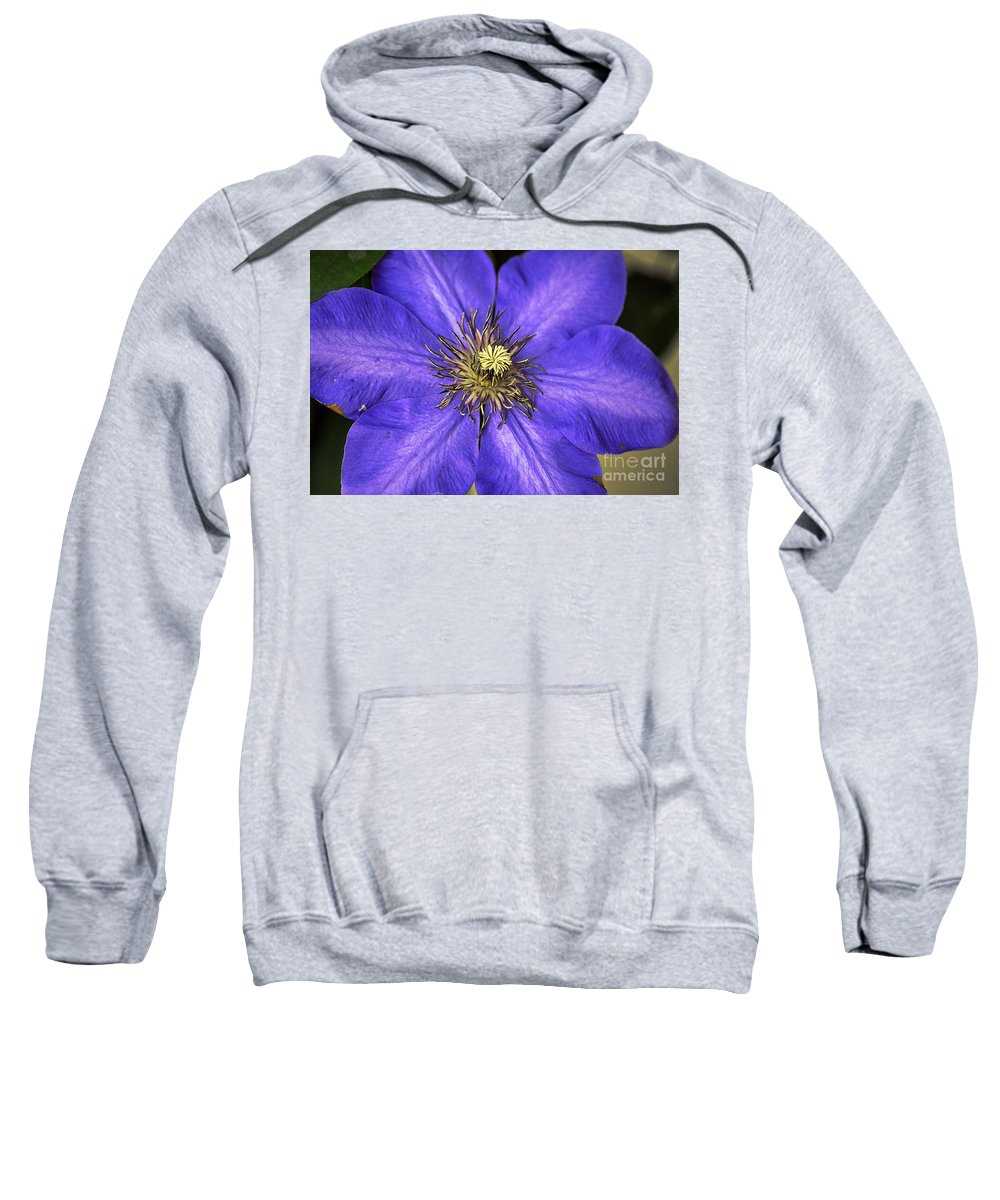 Clay Sweatshirt featuring the photograph Tenticles by Clayton Bruster
