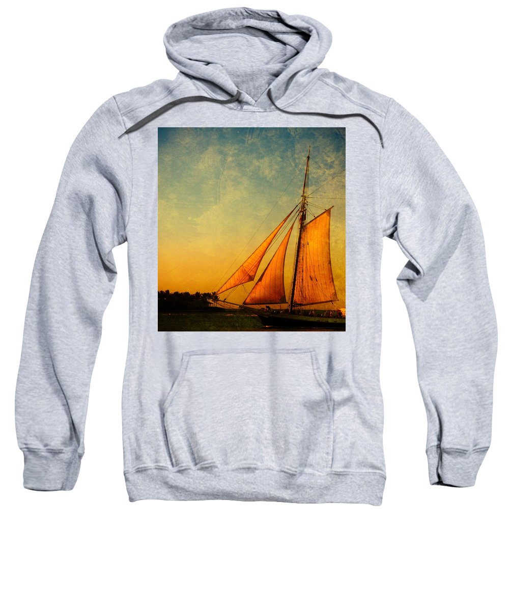 The America Sweatshirt featuring the photograph The America Nr 3 by Susanne Van Hulst
