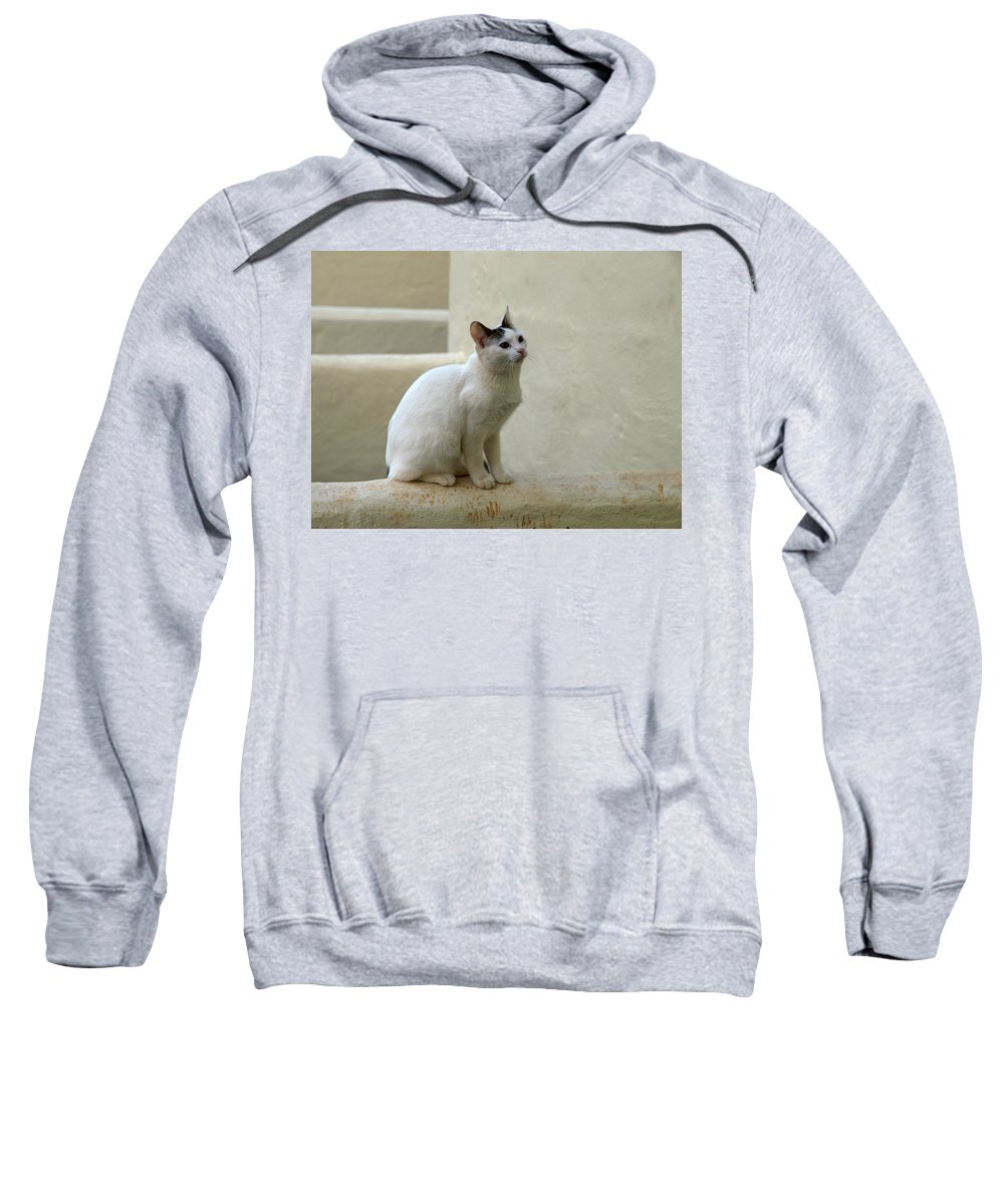 Landscape Sweatshirt featuring the photograph The Blond Nr 1 by Jouko Lehto