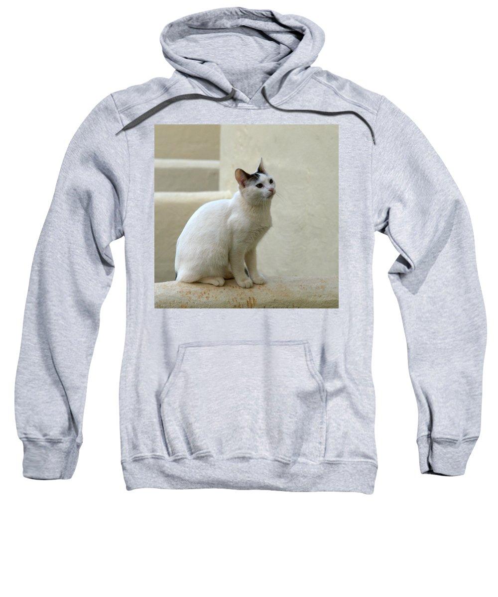 Landscape Sweatshirt featuring the photograph The Blond Nr 2 by Jouko Lehto