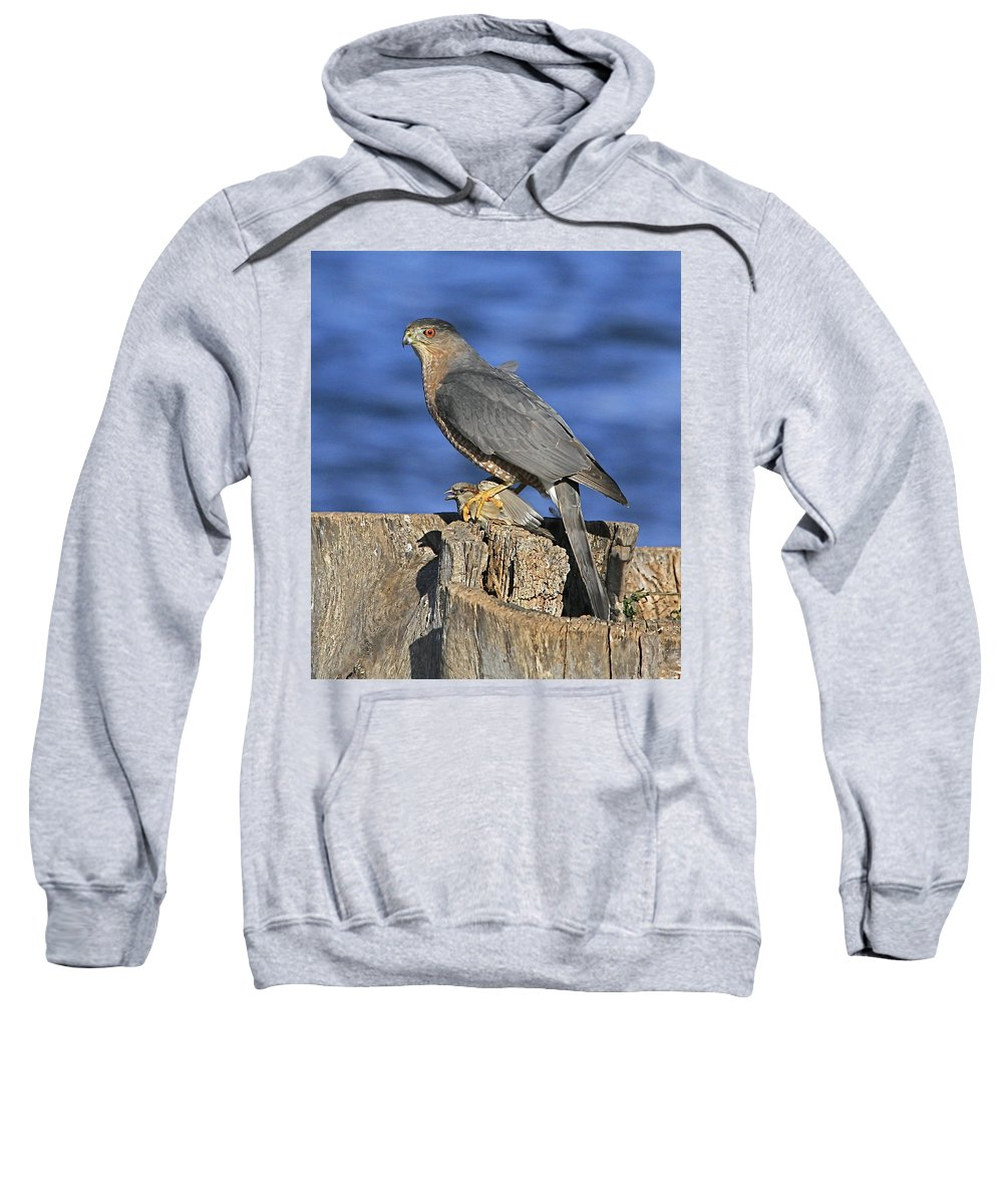 Cooper Sweatshirt featuring the photograph The Catch by Robert Pearson