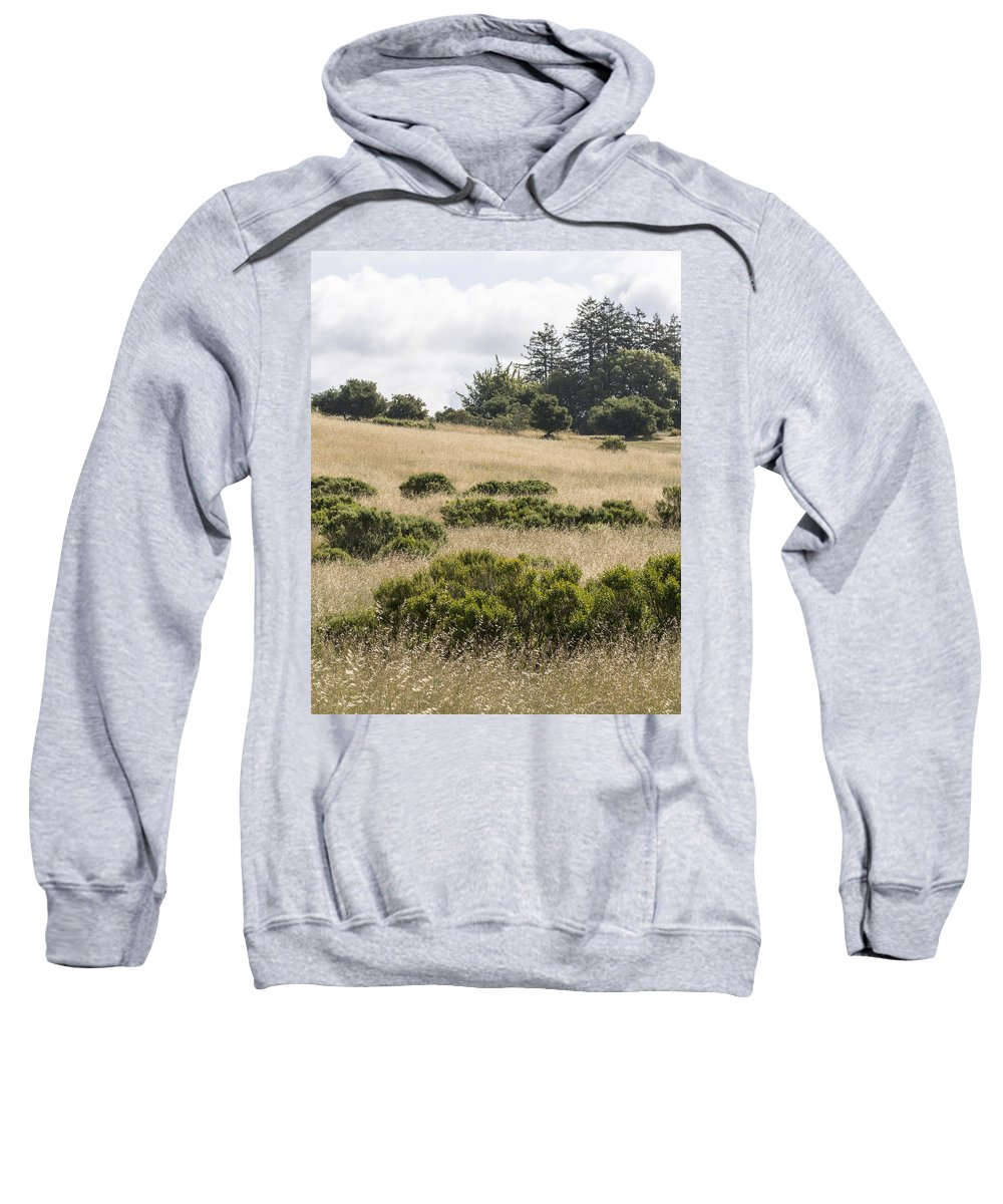 Meadow Sweatshirt featuring the photograph The Central Coast In May by Bruce Frye