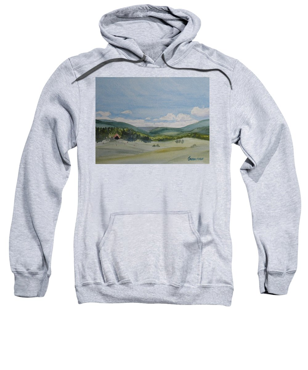 Dynamite Sweatshirt featuring the painting The Dynamite Dome by Jenny Armitage