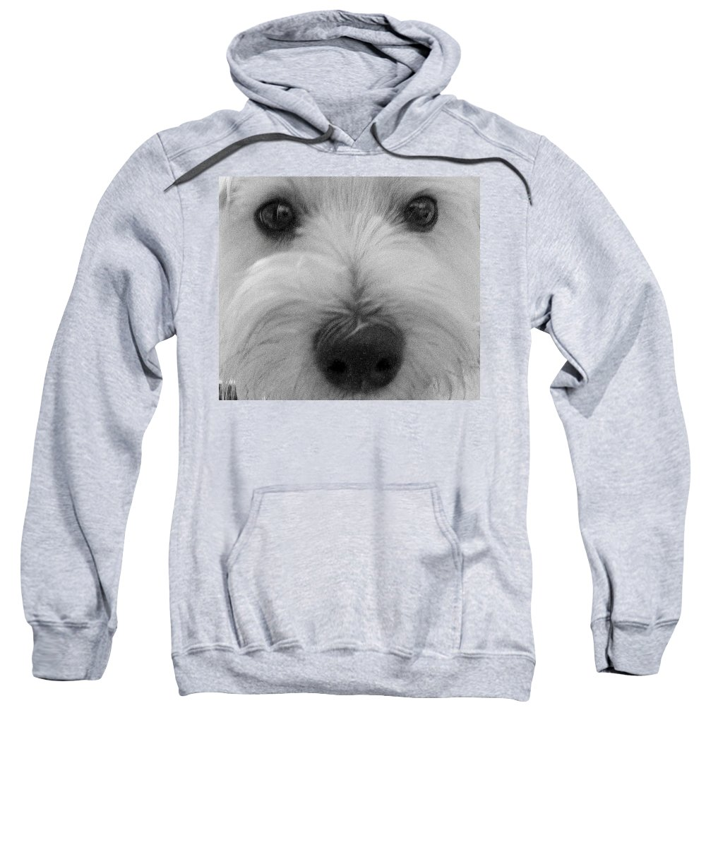 Dog Sweatshirt featuring the photograph The Eyes Have It by Ed Smith