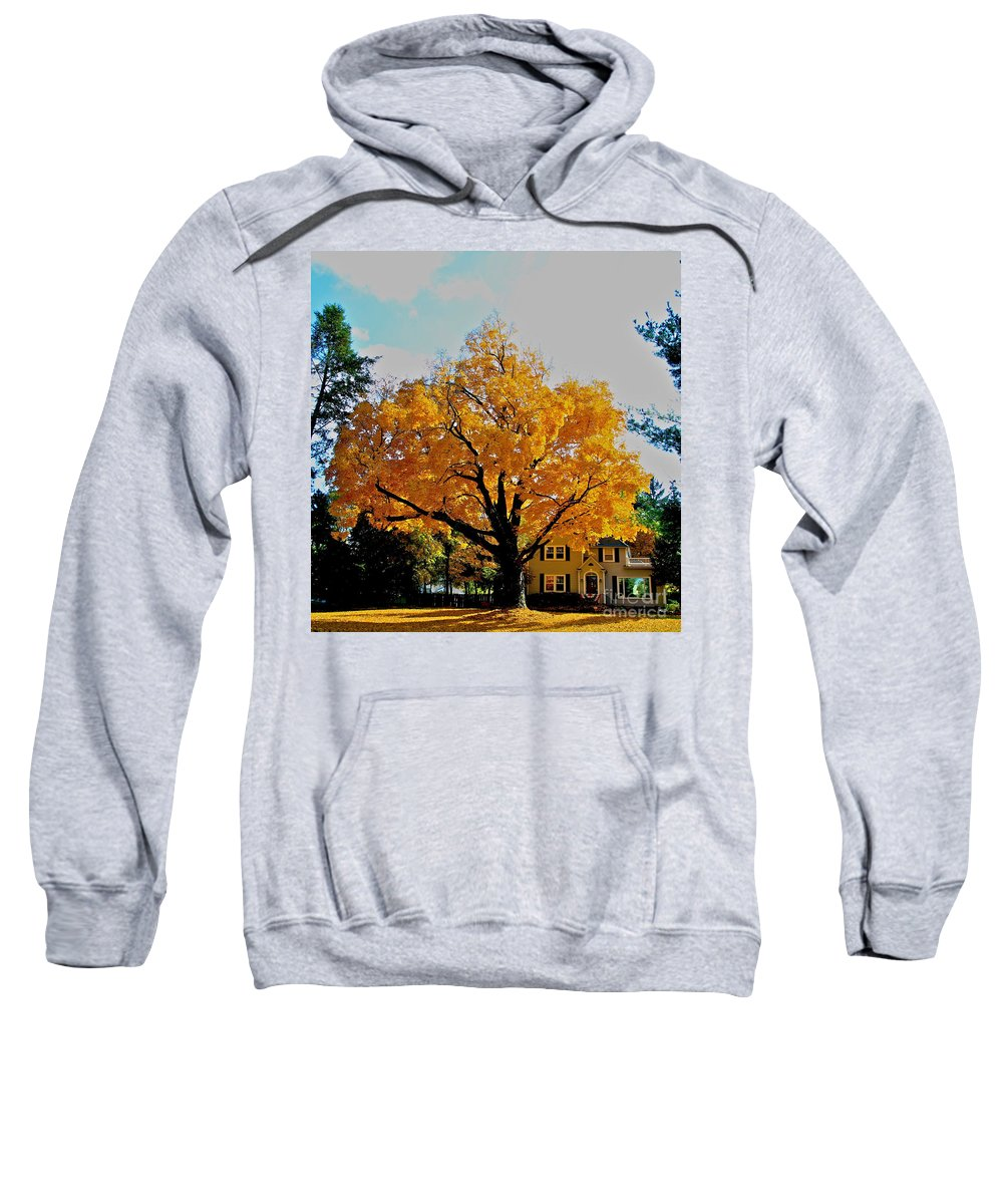 Family Sweatshirt featuring the photograph The Family Tree by Robert Pearson