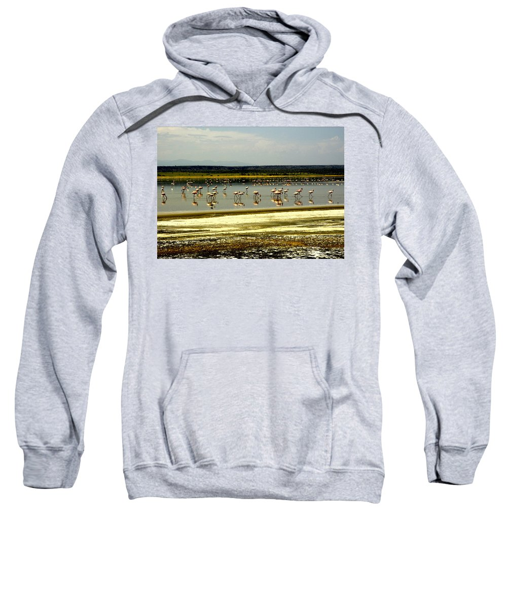 Birds Sweatshirt featuring the photograph The Flamingoes by Patrick Kain