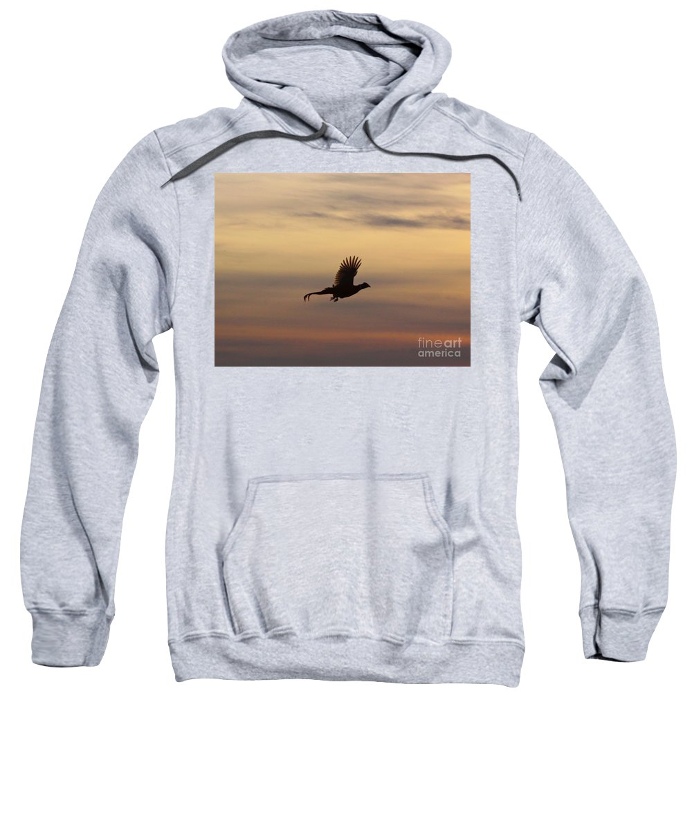 Bird Sweatshirt featuring the photograph The Flight Of The Michigan Phesant by Robert Pearson