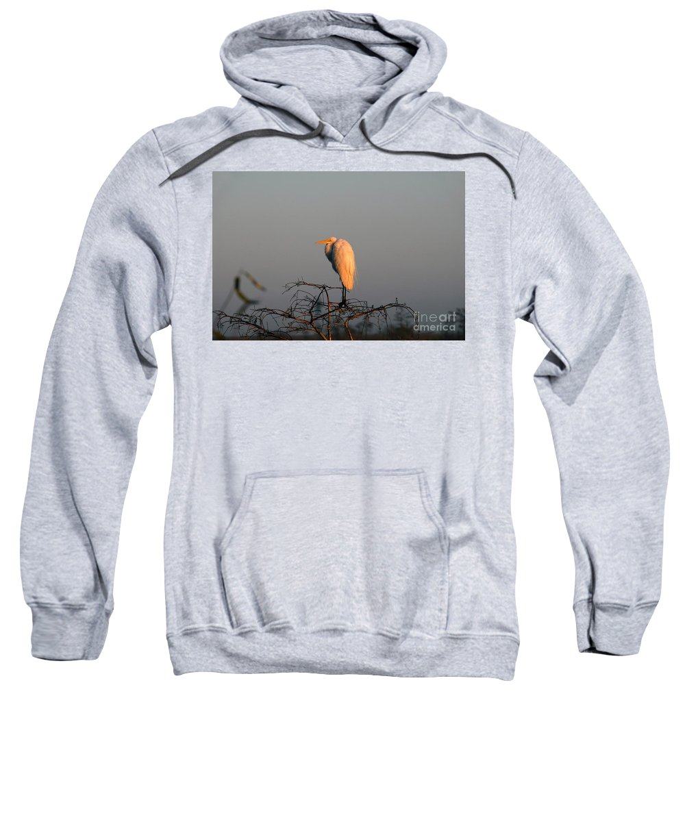 Egret Sweatshirt featuring the photograph The Great Egret by David Lee Thompson
