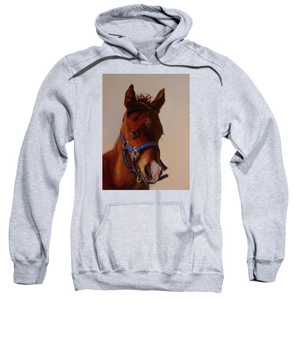 Judy Bradley Sweatshirt featuring the painting The Halter by Judy Bradley