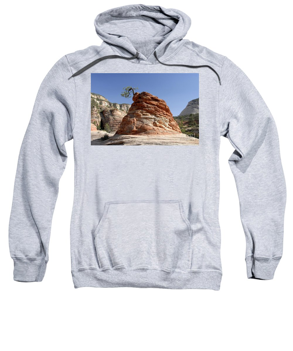 Zion National Park Utah Sweatshirt featuring the photograph The Land Of Zion by David Lee Thompson