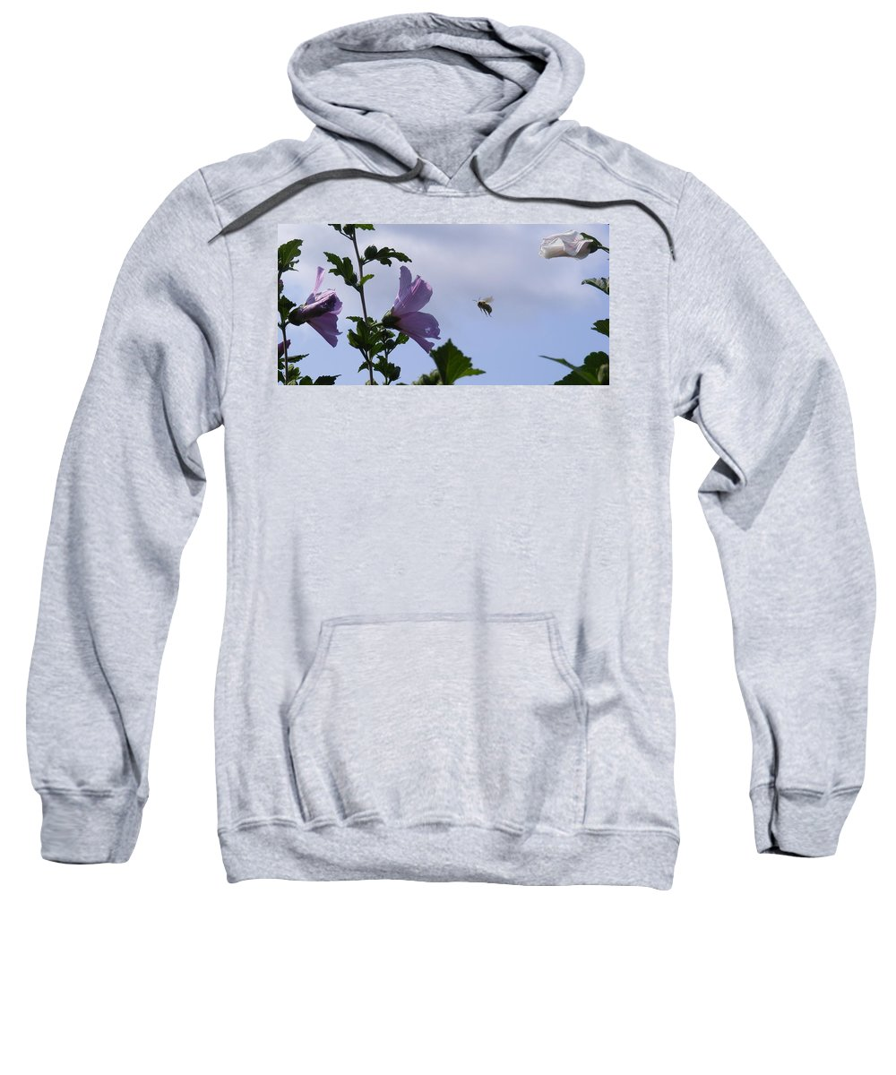 Landscape Sweatshirt featuring the photograph The Landing Strip by Ed Smith
