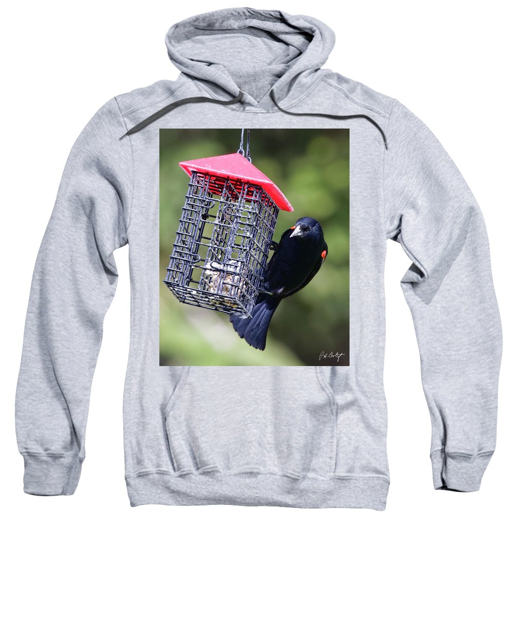 Agelaius Phoeniceus Sweatshirt featuring the photograph The Last Of The Suet by Phill Doherty