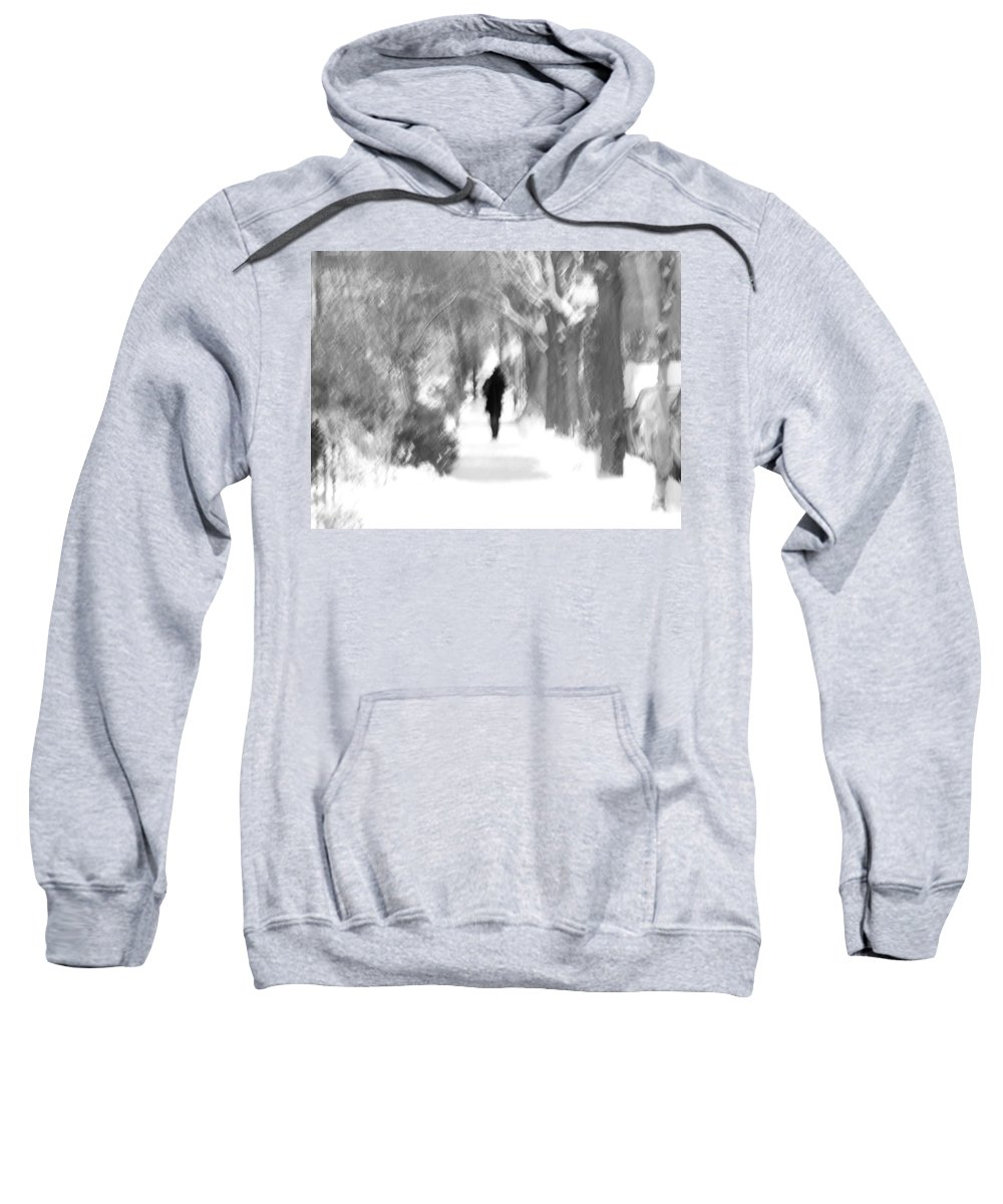 Blur Sweatshirt featuring the photograph The Long December by Dana DiPasquale