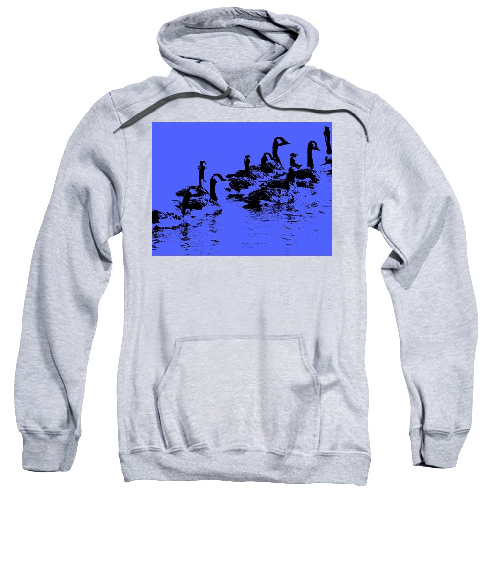 Birds Sweatshirt featuring the photograph The Look Out by Ed Smith