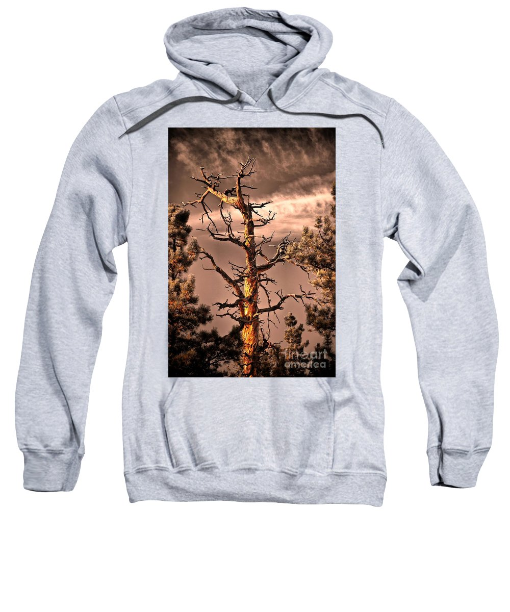 Lurker Sweatshirt featuring the photograph The Lurker II by Charles Dobbs