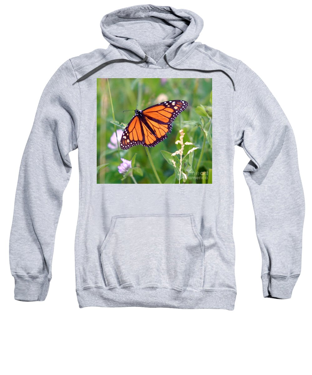 Butterfly Sweatshirt featuring the photograph The Orange Butterfly by Robert Pearson