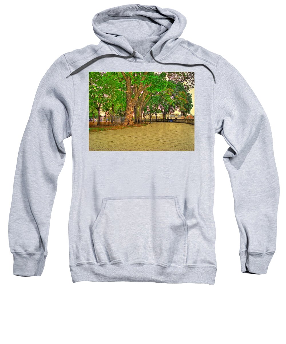 Trees Sweatshirt featuring the photograph The Park by Francisco Colon
