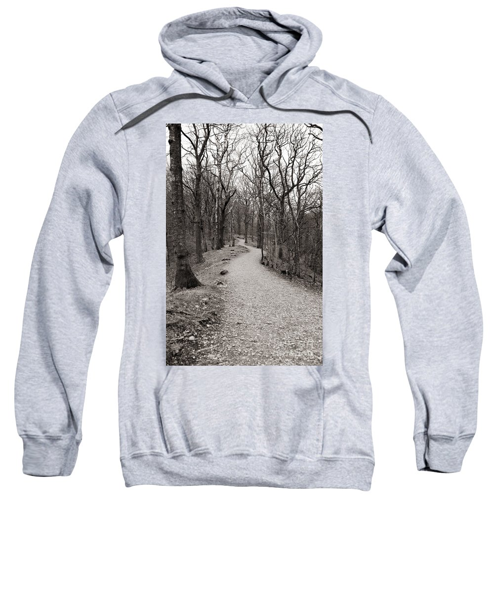 Path Sweatshirt featuring the photograph Where Does It Take You? by Jacqueline Moore