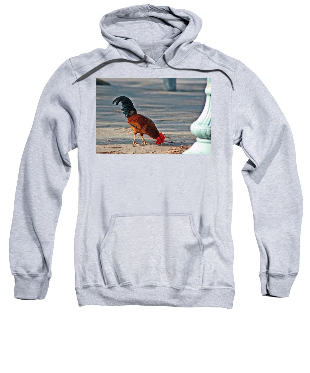 Rooster Sweatshirt featuring the photograph The Picking Rooster by Susanne Van Hulst