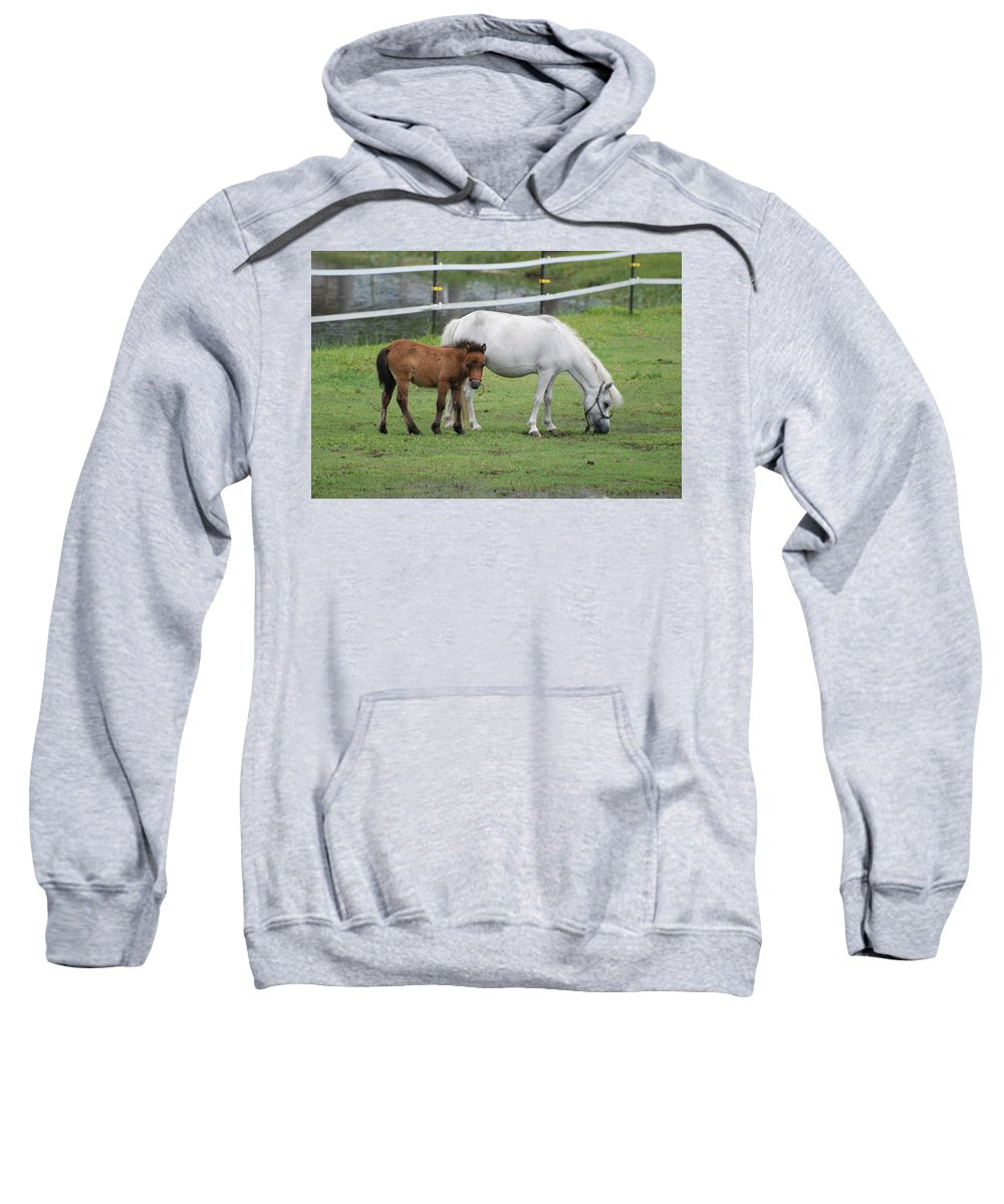 Horse Sweatshirt featuring the photograph The Ponys by Rob Hans