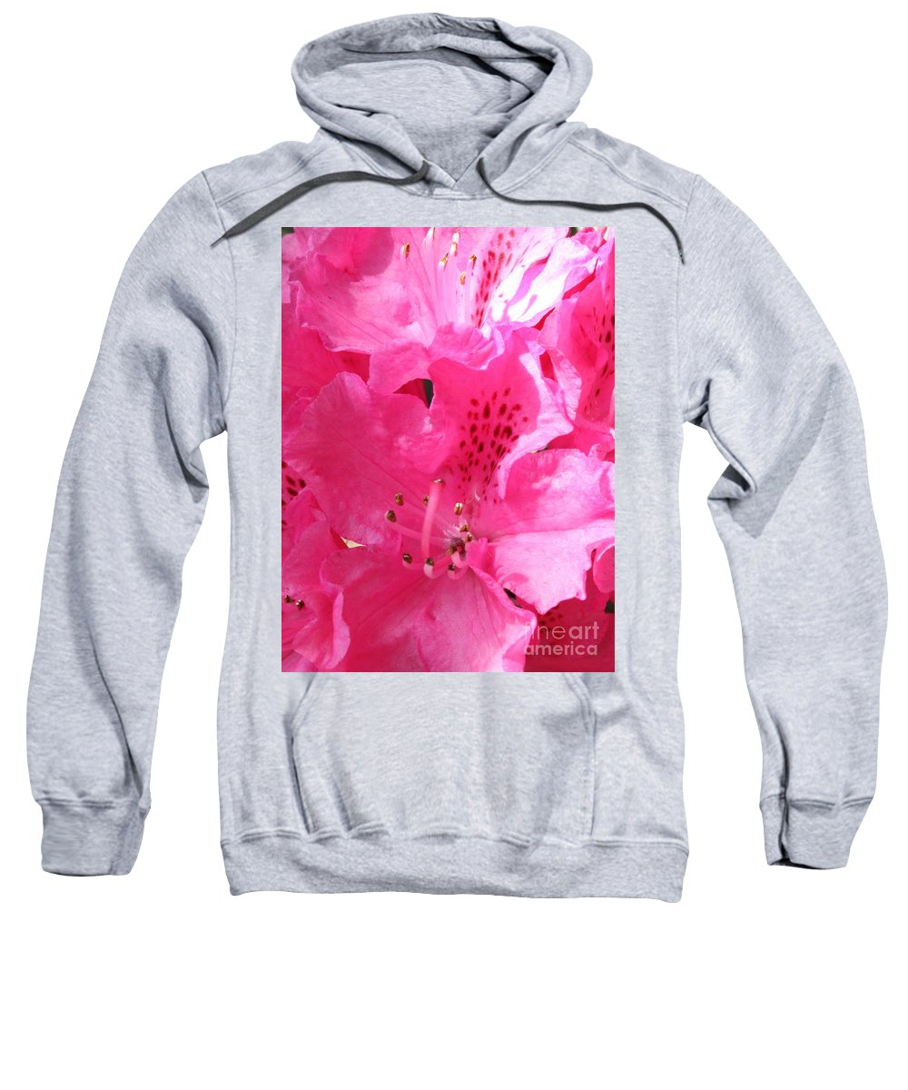 Rhododendron Sweatshirt featuring the photograph The Power Of Pink by Carol Groenen