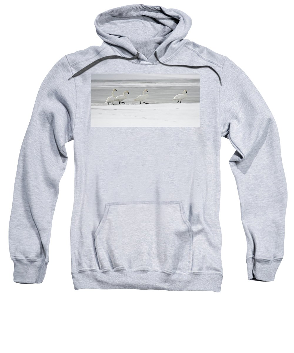 Snow Sweatshirt featuring the photograph The Procession 8018 by Michael Peychich