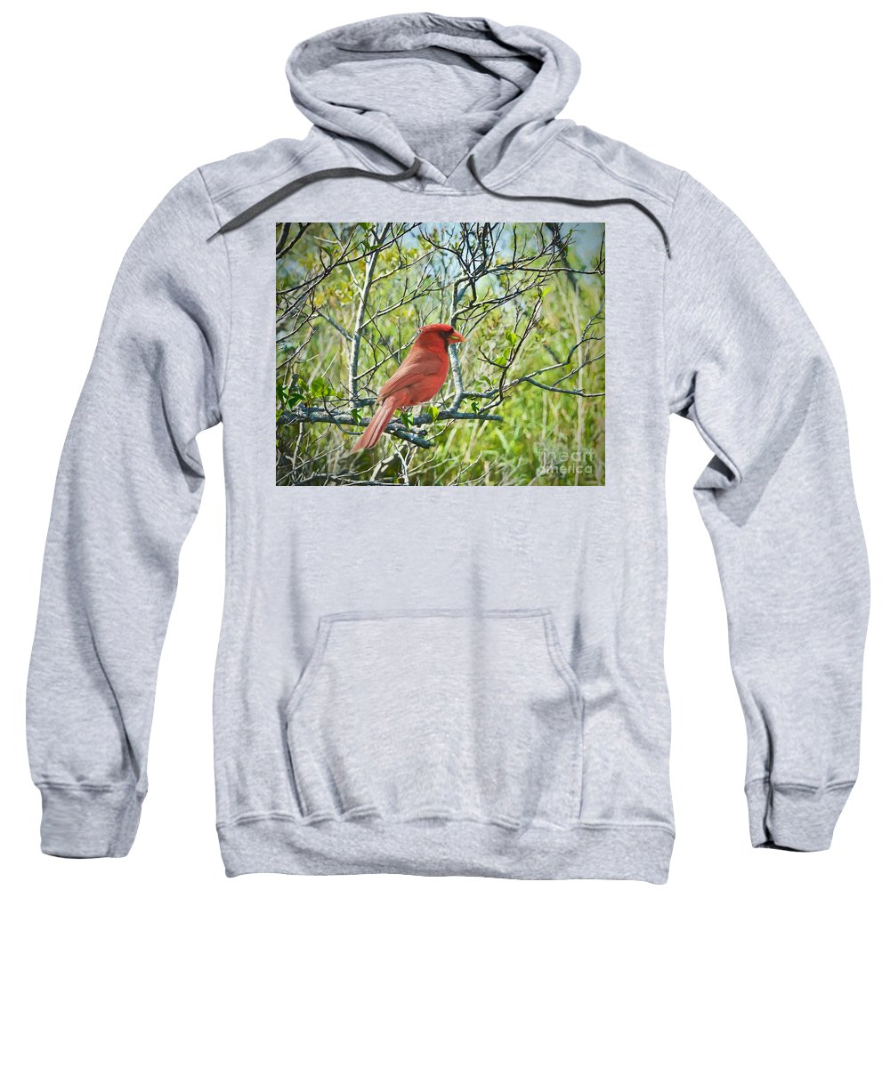 Birds Sweatshirt featuring the painting The Red Cardinal by Judy Kay