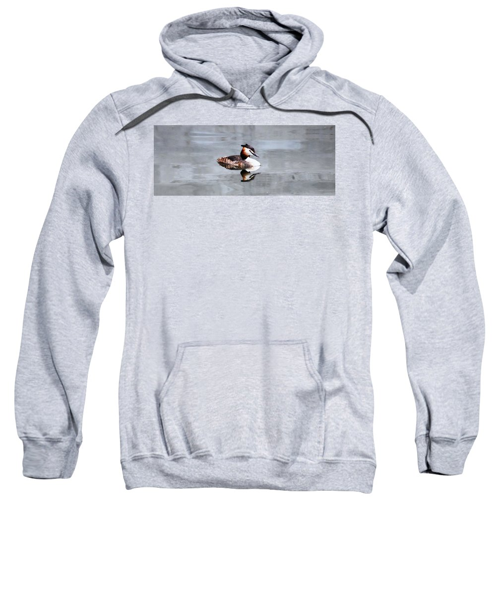 Bird Sweatshirt featuring the photograph The Reflection Of A Grebe by Martin Newman