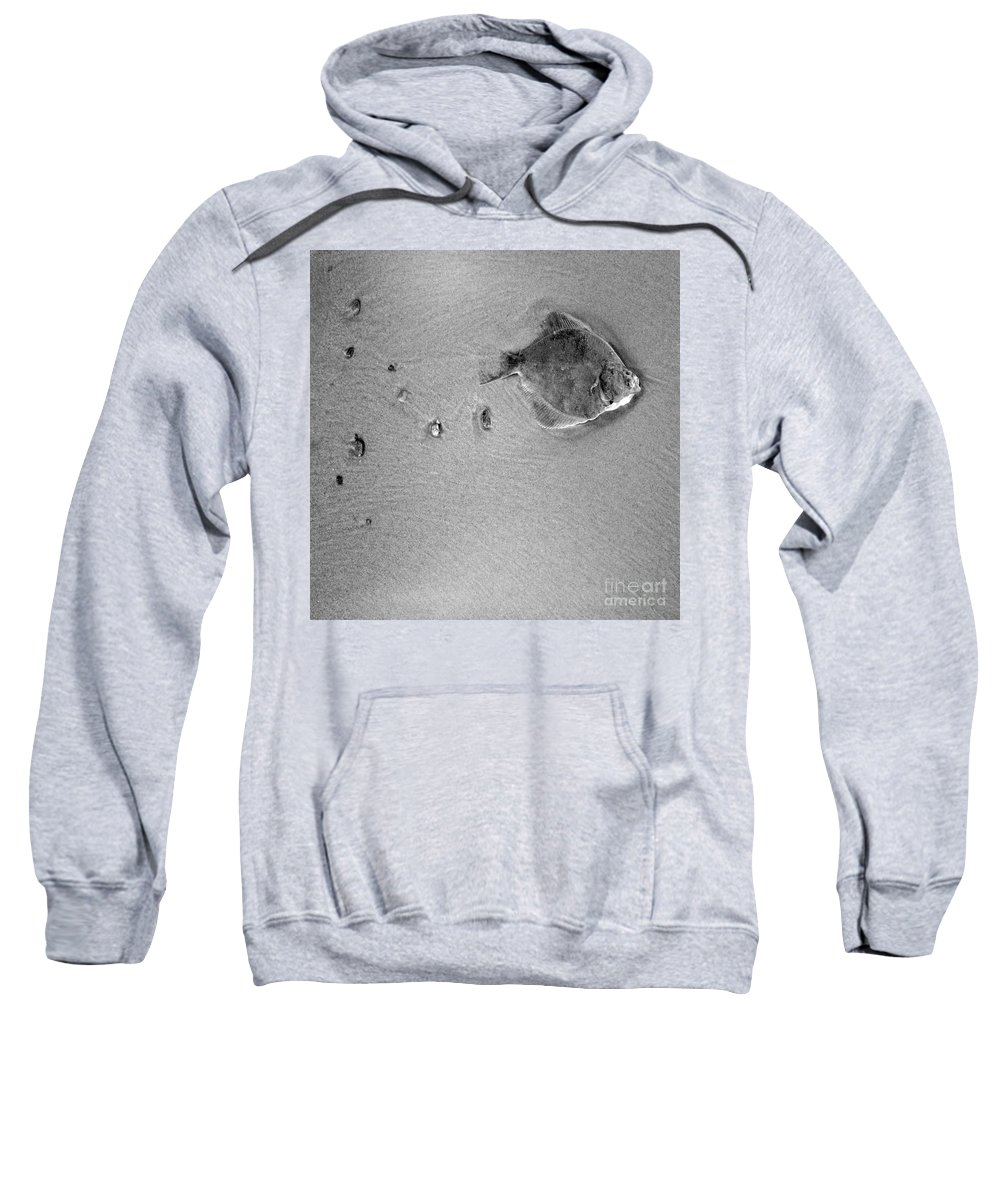 Fish Sweatshirt featuring the photograph The Relief by Angel Ciesniarska