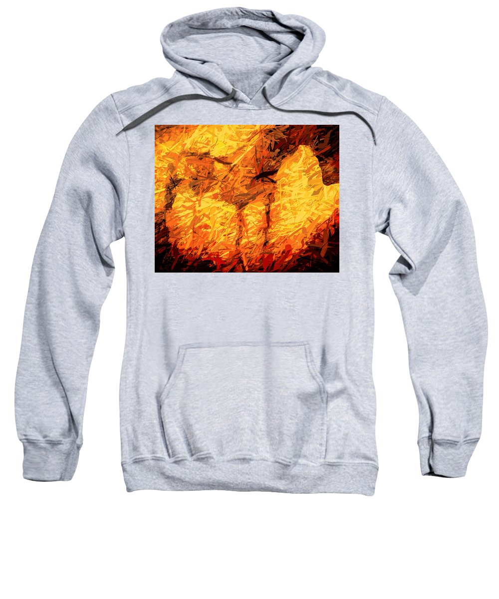 Horse Sweatshirt featuring the photograph The Stallion At Rio Arriba by Terry Fiala