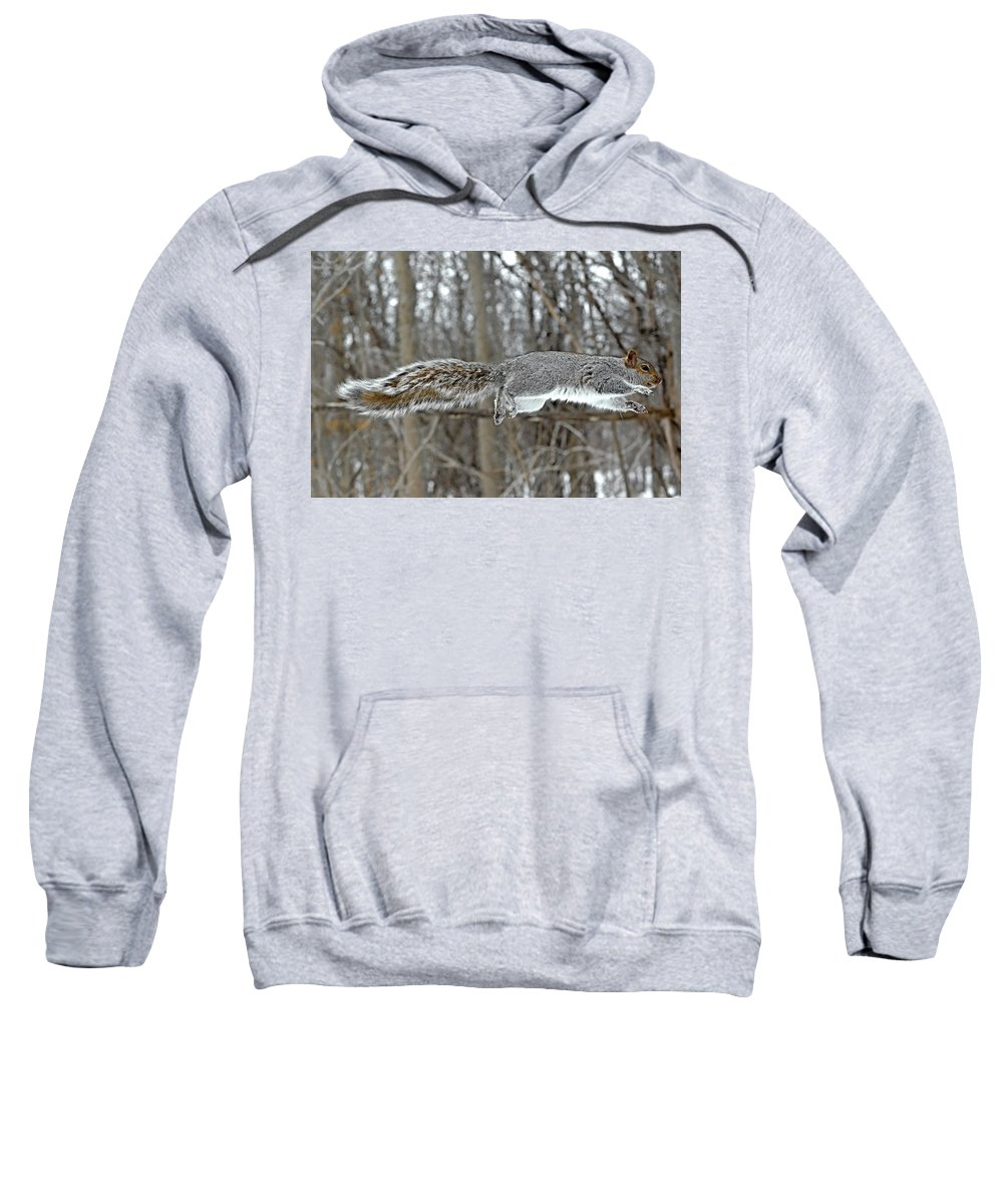 Squirrel Sweatshirt featuring the photograph The Stronger Is My Father by Asbed Iskedjian
