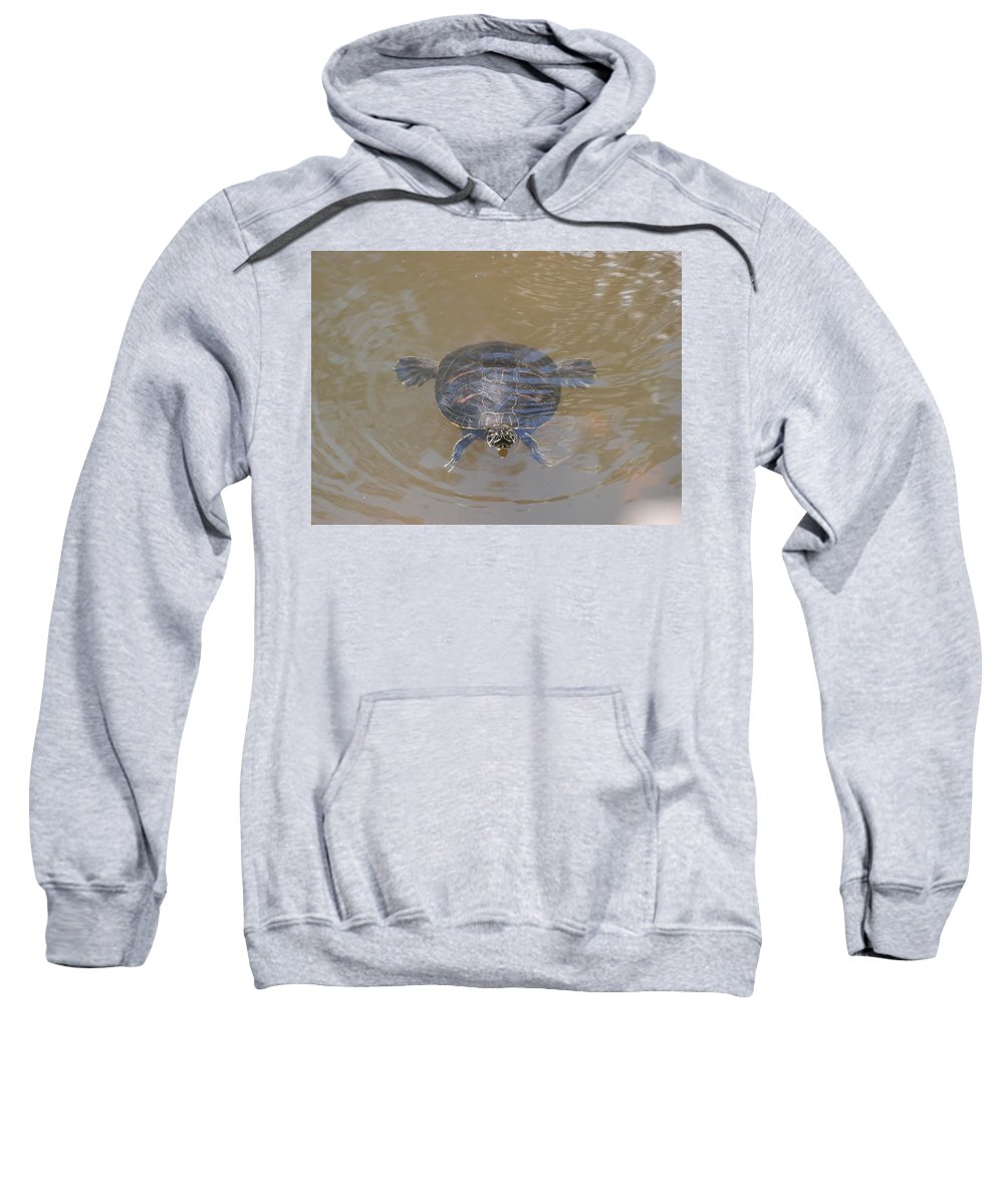 Water Sweatshirt featuring the photograph The Swimming Turtle by Rob Hans
