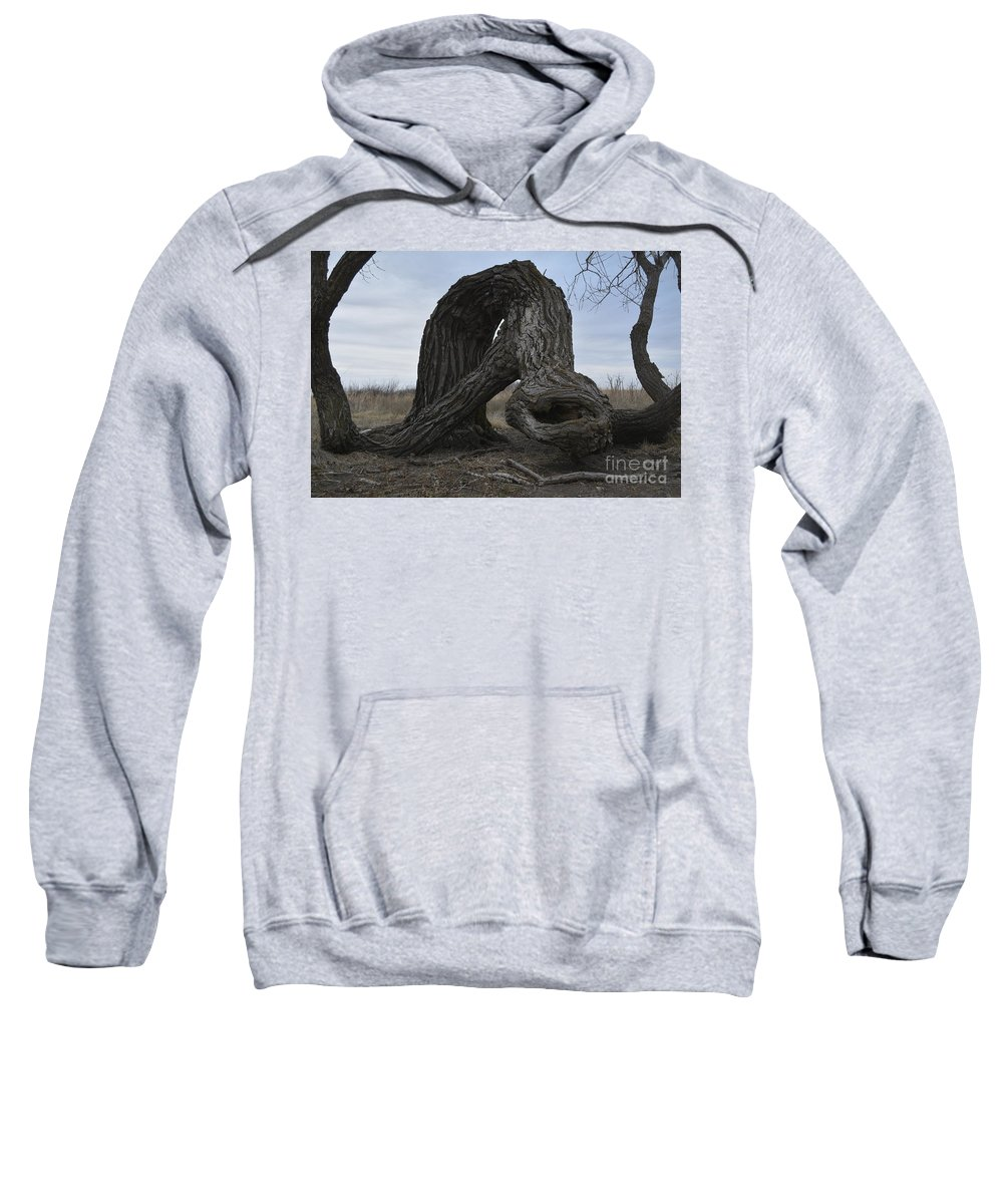 Trees Sweatshirt featuring the photograph The Tree Creature by Audie T Photography